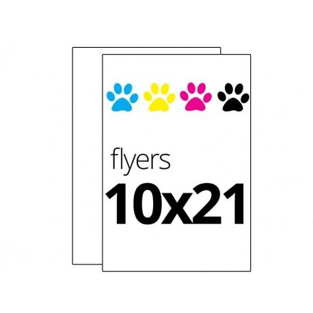 Flyers todo color 10x21