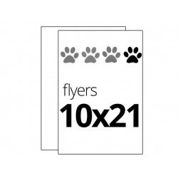 Flyers 1 color 10x21